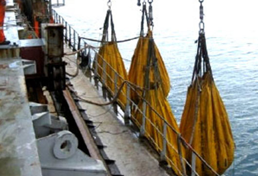 Load Testing of Lifeboat, Cranes, Gangway